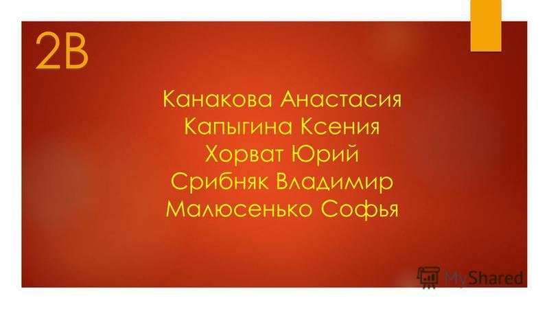 Канакова Анастасия Капыгина Ксения Хорват Юрий Срибняк Владимир Малюсенько Софья 2В
