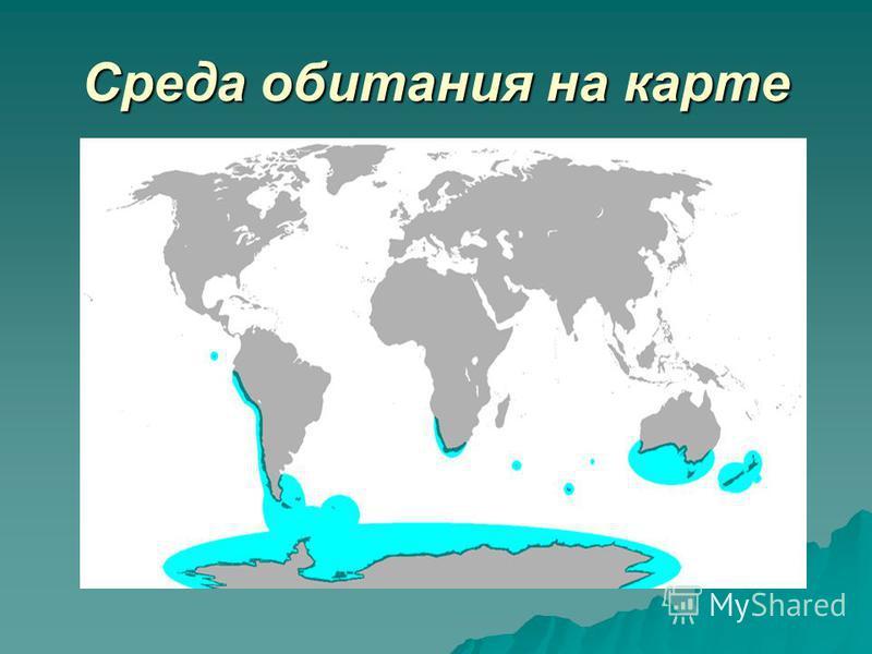 Среда обитания на карте