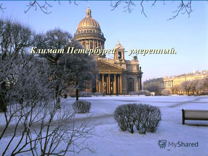 Климат Петербурга умеренный.