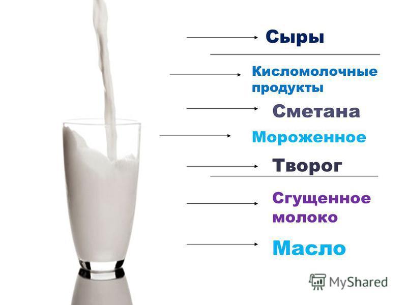 Сыры Кисломолочные продукты Сметана Мороженное Творог Сгущенное молоко Масло