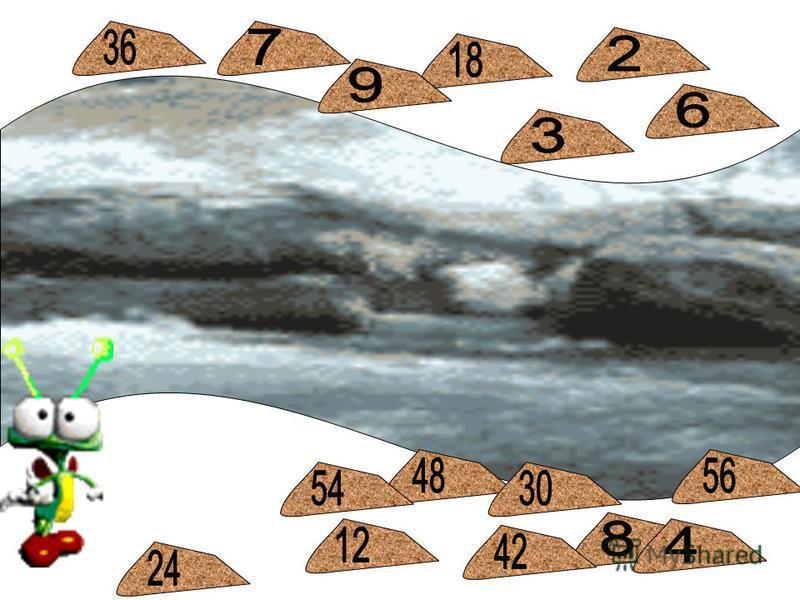 Гусеница -растеряша 12 40 16 36 32 24 20 28