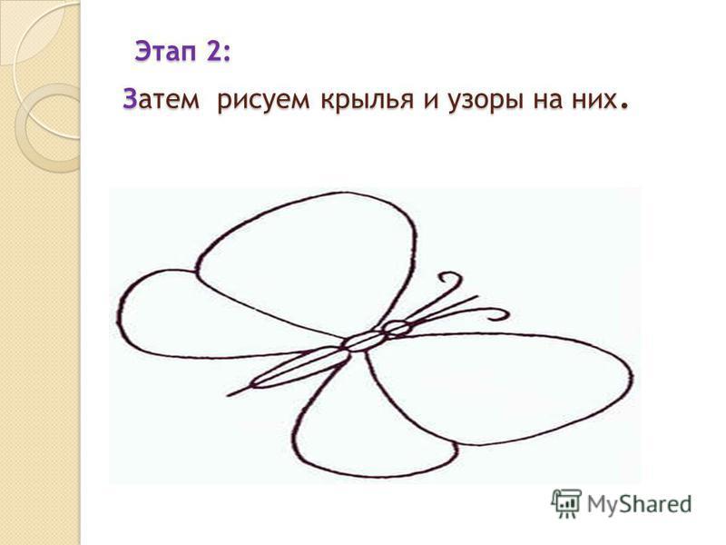 Этап 2: Затем рисуем крылья и узоры на них. Этап 2: Затем рисуем крылья и узоры на них.