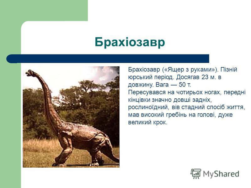 Брахіозавр Брахіозавр («Ящер з руками»). Пізній юрський період. Досягав 23 м. в довжину. Вага 50 т. Пересувався на чотирьох ногах, передні кінцівки значно довші задніх, рослиноїдний, вів стадний спосіб життя, мав високий гребінь на голові, дуже велик