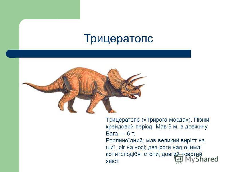 Трицератопс Трицератопс («Трирога морда»). Пізній крейдовий період. Мав 9 м. в довжину. Вага 6 т. Рослиноїдний; мав великий виріст на шиї; ріг на носі; два роги над очима; копитоподібні стопи; довгий товстий хвіст.