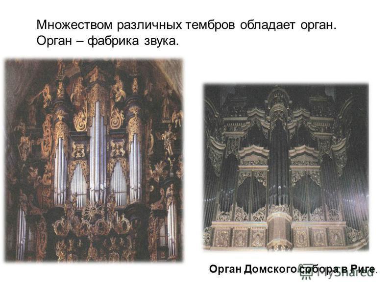 Множеством различных тембров обладает орган. Орган – фабрика звука. Орган Домского собора в Риге.
