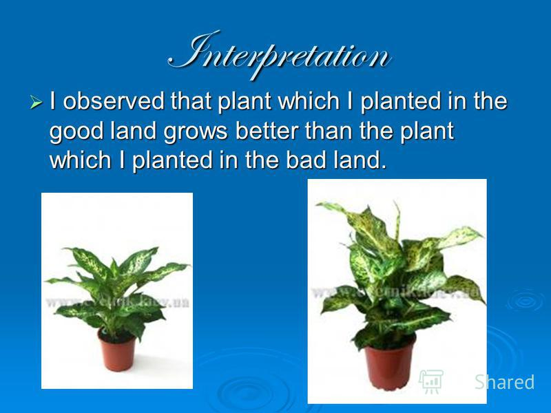 Interpretation I observed that plant which I planted in the good land grows better than the plant which I planted in the bad land. I observed that plant which I planted in the good land grows better than the plant which I planted in the bad land.