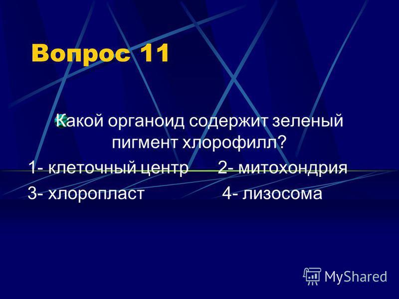 Вопрос 11 Какой органоид содержит зеленый пигмент хлорофилл? 1- клеточный центр 2- митохондрия 3- хлоропласт 4- лизосома