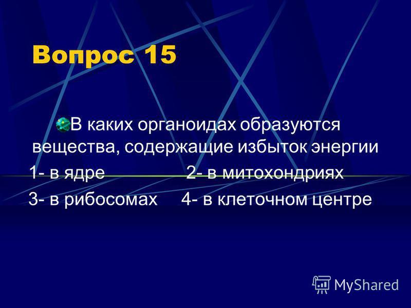 Вопрос 15 В каких органоидах образуются вещества, содержащие избыток энергии 1- в ядре 2- в митохондриях 3- в рибосомах 4- в клеточном центре