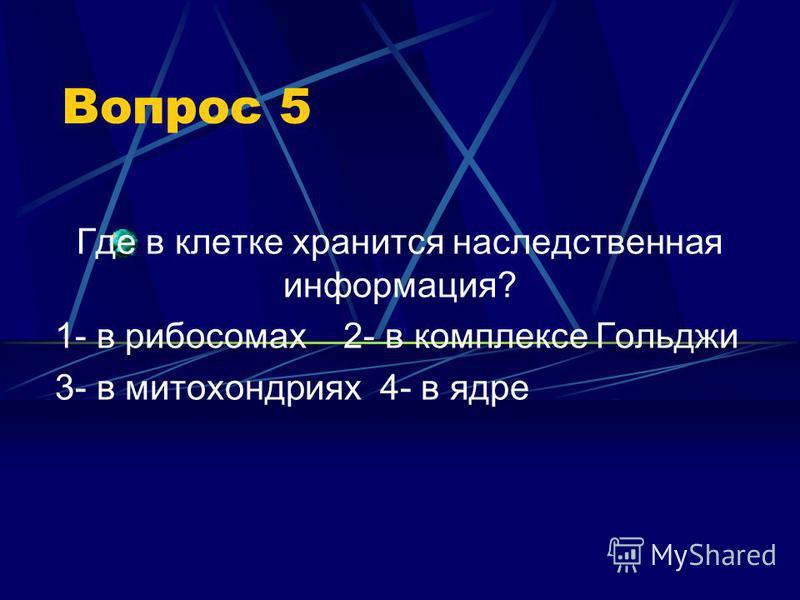 Вопрос 5 Где в клетке хранится наследственная информация? 1- в рибосомах 2- в комплексе Гольджи 3- в митохондриях 4- в ядре