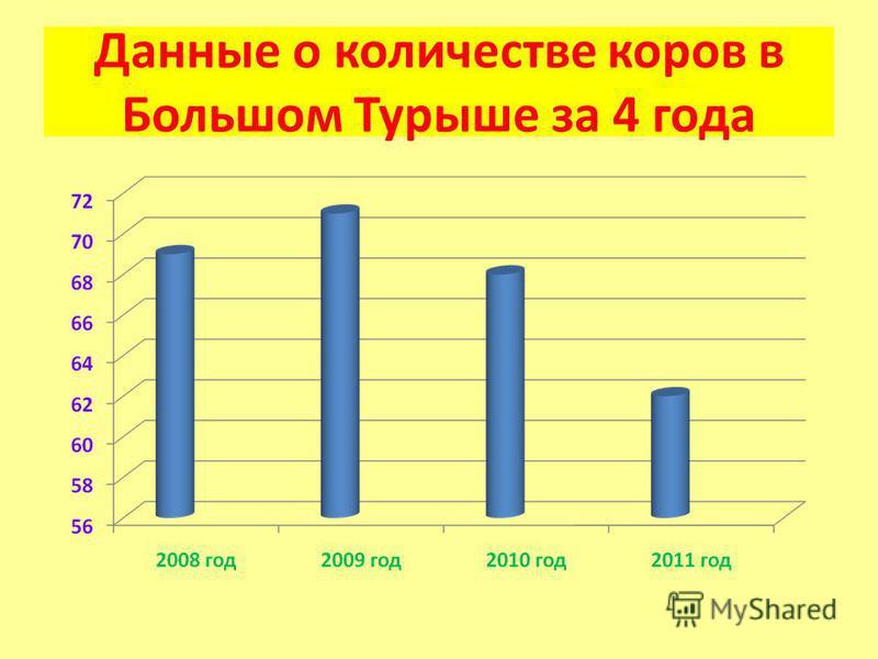 Данные о количестве коров в Большом Турыше за 4 года