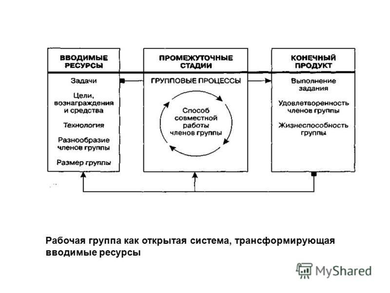 Рабочая группа как открытая система, трансформирующая вводимые ресурсы