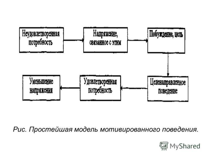 Рис. Простейшая модель мотивированного поведения.