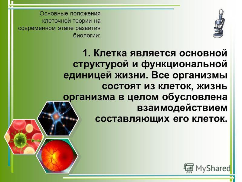 1. Клетка является основной структурой и функциональной единицей жизни. Все организмы состоят из клеток, жизнь организма в целом обусловлена взаимодействием составляющих его клеток.