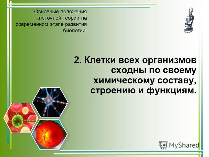 Основные положения клеточной теории на современном этапе развития биологии: 2. Клетки всех организмов сходны по своему химическому составу, строению и функциям.