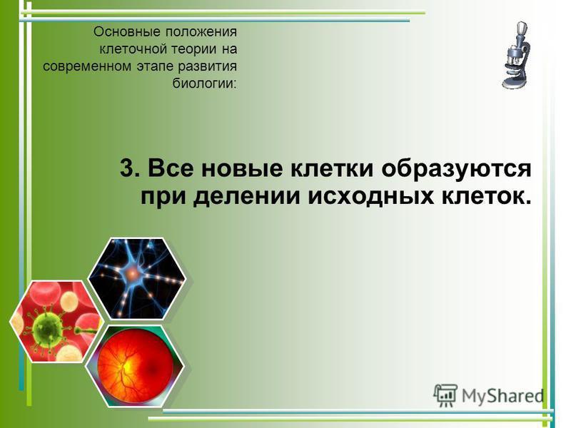Основные положения клеточной теории на современном этапе развития биологии: 3. Все новые клетки образуются при делении исходных клеток.