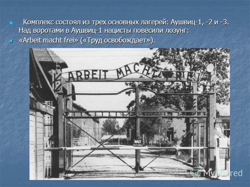 Комплекс состоял из трех основных лагерей: Аушвиц-1, -2 и -3. Над воротами в Аушвиц-1 нацисты повесили лозунг: Комплекс состоял из трех основных лагерей: Аушвиц-1, -2 и -3. Над воротами в Аушвиц-1 нацисты повесили лозунг: «Arbeit macht frei» («Труд о