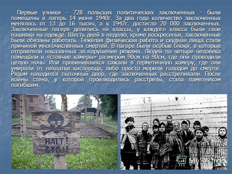 Первые узники - 728 польских политических заключенных - были помещены в лагерь 14 июня 1940 г. За два года количество заключенных менялось от 13 до 16 тысяч, а к 1942 г. достигло 20 000 заключенных. Заключенные лагеря делились на классы, у каждого кл