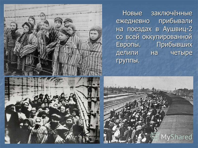 Новые заключённые ежедневно прибывали на поездах в Аушвиц-2 со всей оккупированной Европы. Прибывших делили на четыре группы. Новые заключённые ежедневно прибывали на поездах в Аушвиц-2 со всей оккупированной Европы. Прибывших делили на четыре группы