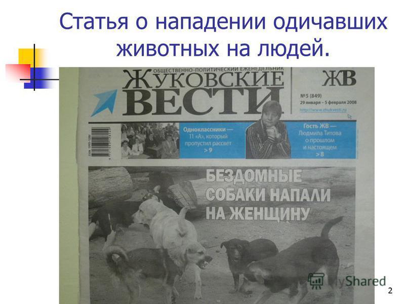1 Домашние животные в городе МОУ средняя общеобразовательная школа 5 им. Ю.А. Гарнаева с углубленным изучением отдельных предметов