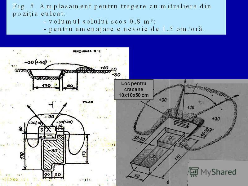 Loc pentru cracane 10x10x50 cm
