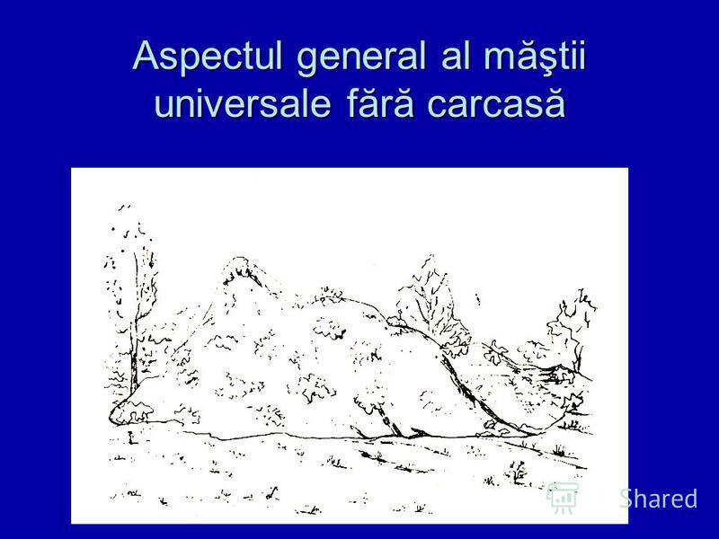 Aspectul general al măştii universale fără carcasă