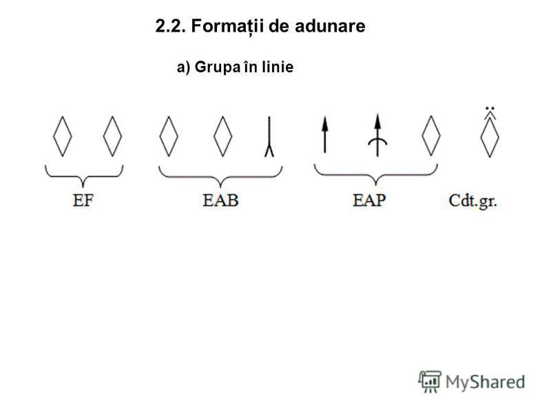 2.2. Formaţii de adunare a) Grupa în linie