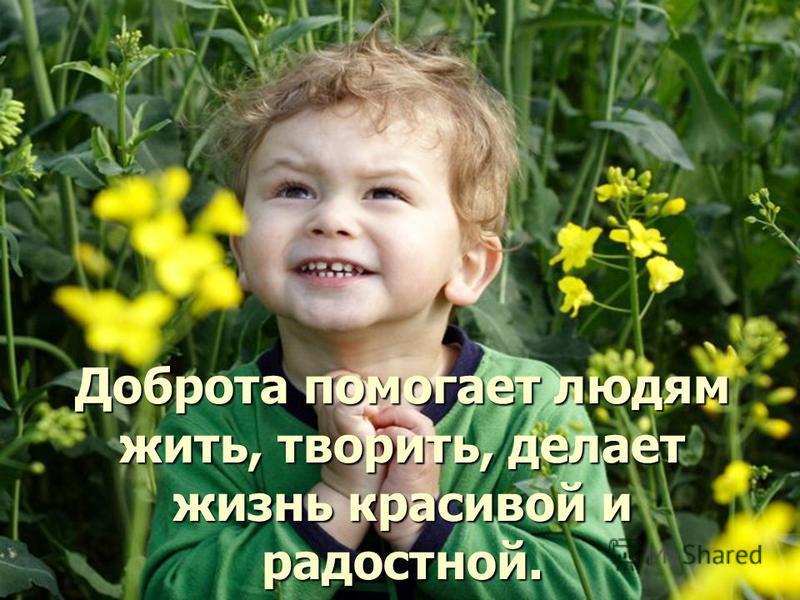 Доброта помогает людям жить, творить, делает жизнь красивой и радостной.