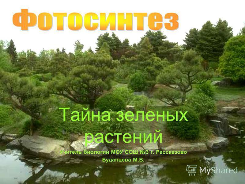 Тайна зеленых растений Учитель биологии МОУ СОШ 3 г. Рассказово Буданцева М.В.