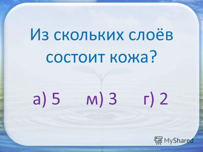 Из скольких слоёв состоит кожа? а) 5 м) 3 г) 2
