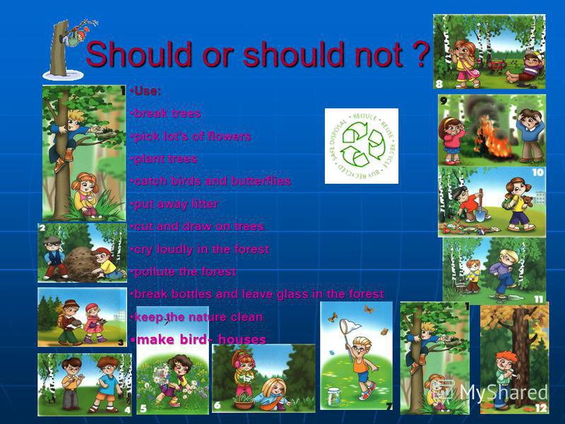 Should or should not ? Use:Use: break treesbreak trees pick lots of flowerspick lots of flowers plant treesplant trees catch birds and butterfliescatch birds and butterflies put away litterput away litter cut and draw on treescut and draw on trees cr