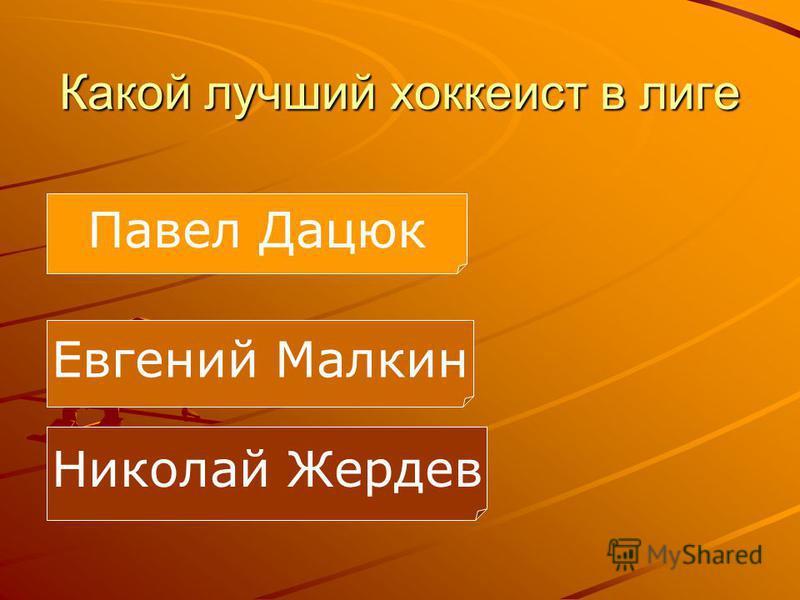Какой лучший хоккеист в лиге Евгений Малкин Николай Жердев Павел Дацюк