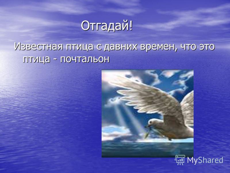 Отгадай! Известная птица с давних времен, что это птица - почтальон