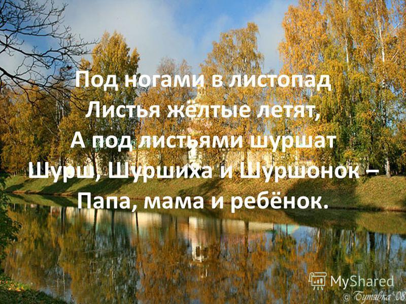 Под ногами в листопад Листья жёлтые летят, А под листьями шуршат Шурш, Шуршиха и Шуршонок – Папа, мама и ребёнок.