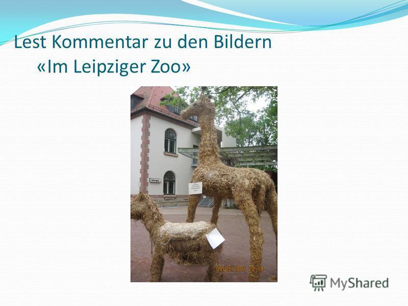 Lest Kommentar zu den Bildern «Im Leipziger Zoo»