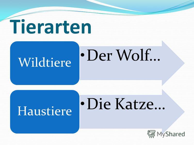 Tierarten Der Wolf… Wildtiere Die Katze… Haustiere