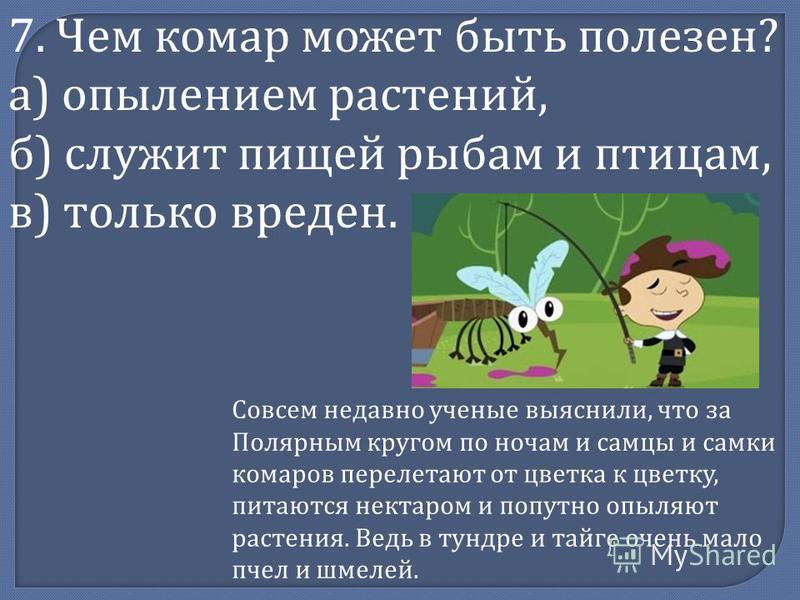 7. Чем комар может быть полезен? а) опылением растений, б) служит пищей рыбам и птицам, в) только вреден. Совсем недавно ученые выяснили, что за Полярным кругом по ночам и самцы и самки комаров перелетают от цветка к цветку, питаются нектаром и попут