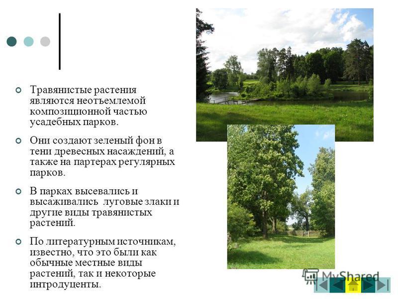 Травянистые растения являются неотъемлемой композиционной частью усадебных парков. Они создают зеленый фон в тени древесных насаждений, а также на партерах регулярных парков. В парках высевались и высаживались луговые злаки и другие виды травянистых