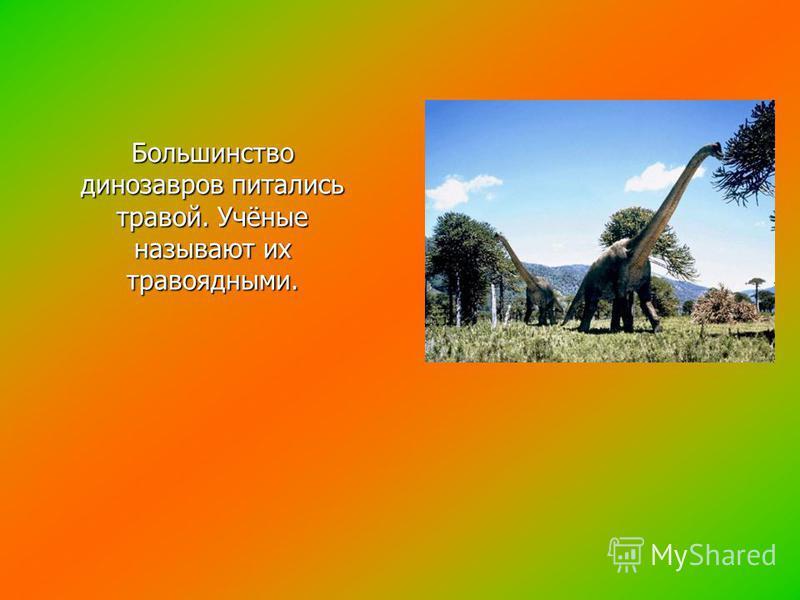 Большинство динозавров питались травой. Учёные называют их травоядными.