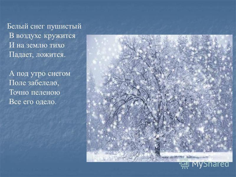 Белый снег пушистый В воздухе кружится И на землю тихо Падает, ложится. А под утро снегом Поле забелело, Точно пеленою Все его одело.