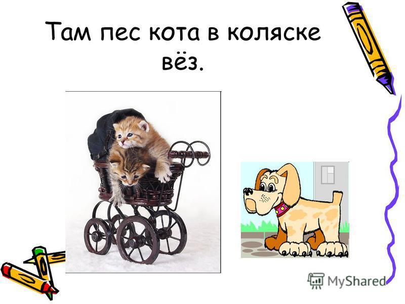 Там пес кота в коляске вёз.