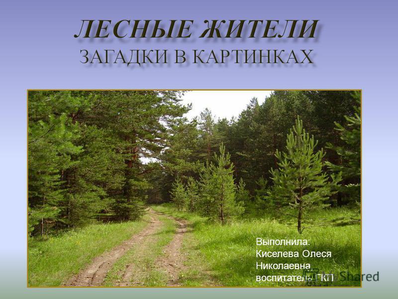 Выполнила: Киселева Олеся Николаевна, воспитатель ГКП