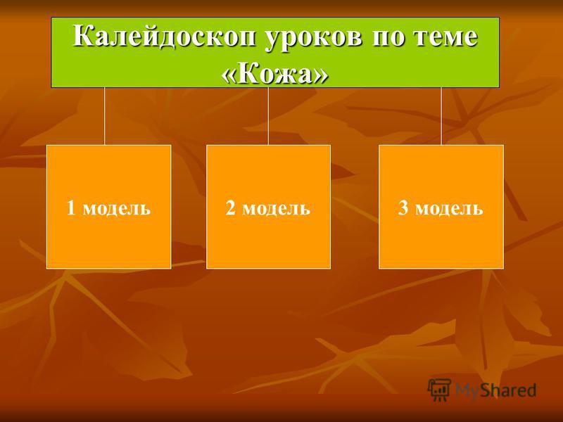 Калейдоскоп уроков по теме «Кожа» 1 модель 2 модель 3 модель
