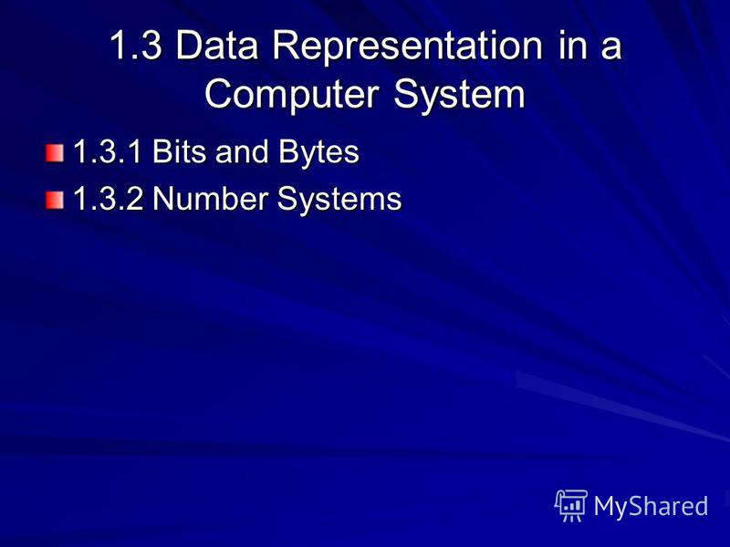 1.3 Data Representation in a Computer System 1.3.1 Bits and Bytes 1.3.2 Number Systems
