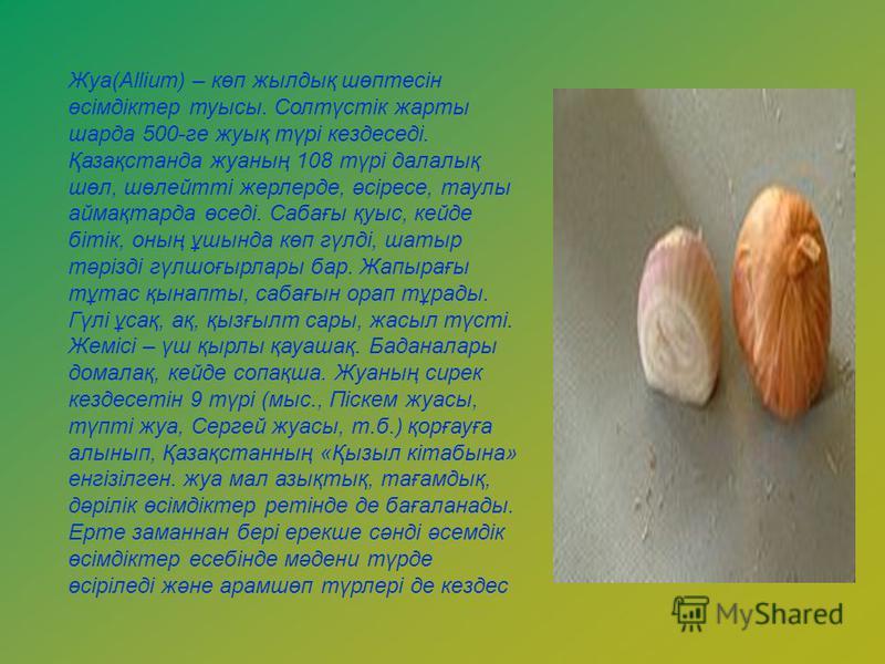 Жуа(Allіum) – көп жылдық шөптесін өсімдіктер туысы. Солтүстік жарты шарда 500-ге жуық түрі кездеседі. Қазақстанда жуаның 108 түрі далалық шөл, шөлейтті жерлерде, әсіресе, таулы аймақтарда өседі. Сабағы қуыс, кейде бітік, оның ұшында көп гүлді, шатыр