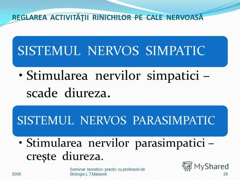 REGLAREA ACTIVITĂŢII RINICHILOR PE CALE NERVOASĂ SISTEMUL NERVOS SIMPATIC Stimularea nervilor simpatici – scade diureza. SISTEMUL NERVOS PARASIMPATIC Stimularea nervilor parasimpatici – creşte diureza. 28 Seminar teoretico- practic cu profesorii de B