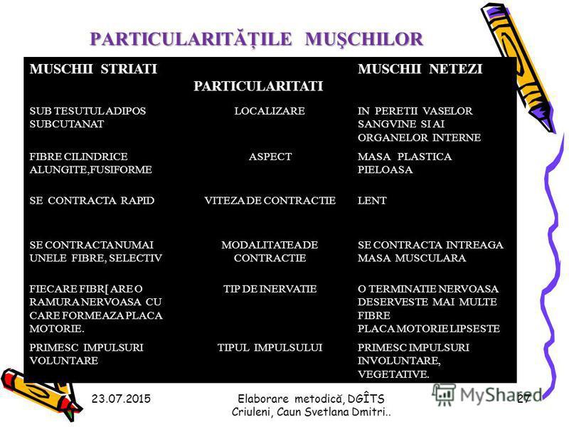 Structura fibrei musculare 23.07.201526Elaborare metodică, DGÎTS Criuleni, Caun Svetlana Dmitri..