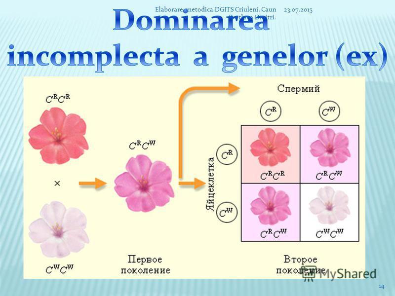 1. Particularitatile genotipurilor – indivizii investigati se aleg dupa anumite caractere contrastante. 2. Puritatea genetica a formelor parentale – indivizii supusi analizei genetice se caracterizeaza printr-o uniformitate constanta a caracterelor i