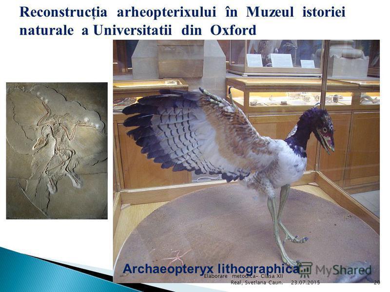 Pteranodonhharder 23.07.201519 Elaborare metodica- Clasa XII Real, Svetlana Caun.