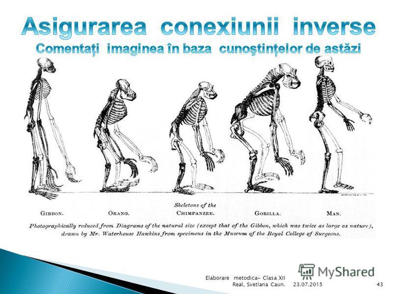 Structura şi înălţimea comparativă a omului, mamutului, şi elefantului african. 23.07.201542 Elaborare metodica- Clasa XII Real, Svetlana Caun.