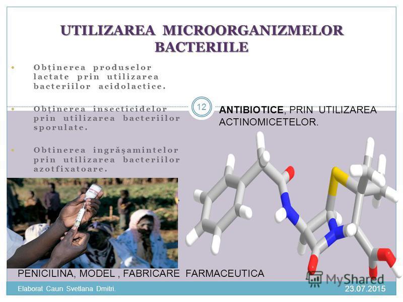 Obţinerea produselor lactate prin utilizarea bacteriilor acidolactice. Obţinerea insecticidelor prin utilizarea bacteriilor sporulate. Obtinerea ingr ă şamintelor prin utilizarea bacteriilor azotfixatoare. Obtinerea vaccinurilor prin utilizarea bacte